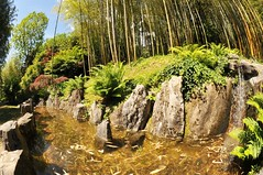 Il giardino Zen (illyphoto) Tags: italy italia villacarlotta lombardia bambu laghetto giardinozen tremezzo bambù cannedibambu illyphoto parcodivillacarlotta photoilariaprovenzi