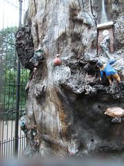 LONDON 1719 (RANCHO COCOA) Tags: wood uk england tree london clock garden elf trunk kensington kensingtongardens carvings sculpted elves theelfinoak