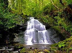 falling (czd72) Tags: wild flow waterfall silk hidden
