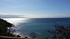20141109_093901 (dntanderson) Tags: hawaii maui 2014 november09