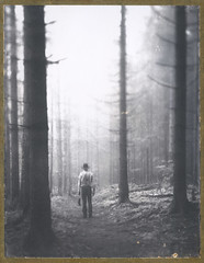On Wild Paths (Bastiank80) Tags: life camera light wild bw white black film analog dark way polaroid woods walk live being large right hike inner human soul instant 4x5 sheet format paths expired ebony 52 guiding roidweek bastiank sv45ti