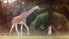 Wanderlust Traveler Series (christierache) Tags: macro photography miniature photographer cities twin editorial hoover giraffe conceptual zev minneapolisphotographer christierachelle wanderlusttraveler