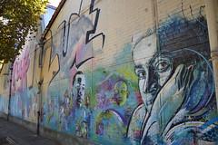 Mur d'usine, fresque murale, Vitry-sur-Seine (Jeanne Menjoulet) Tags: streetart france fresco détail vitrysurseine c215 fresquemurale murdusine