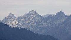 DJT_9213 (David J. Thomas) Tags: travel family trees vacation mountains scenery northwest idaho backroads forests