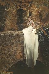 Les Derniers soirs de nos vies (helenerockphoto) Tags: wood bridge autumn wedding france fall forest dress silk soie