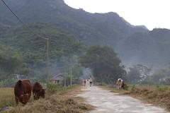 _MG_0636 (liem.ionetour) Tags: travel beautiful landscape nice asia tour du vietnam tay viet mai re gia dep sapa nam bac chau ione maichau dulich mocchau taybac hapdan ionetour