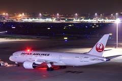 ボーイング787-8 Boeing 787-8 (ELCAN KE-7A) Tags: japan airplane tokyo pentax terminal international airline 日本 東京 boeing jl airlines jal haneda 2014 787 飛行機 羽田 b787 空港 日本航空 航空機 ペンタックス 日航 国際 ターミナル 国際線 airportl ボーイング k5ⅱs