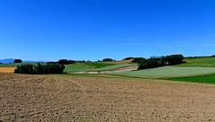 Labours et cultures (Diegojack) Tags: perspectives campagne paysages vaud bls vaudoise aclens bremblens