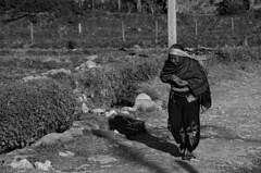 Mujer Pokhara (kubrick200x) Tags: street city trip travel viaje nepal nature beauty asia journey pokhara viajar asiatrip nikod5100