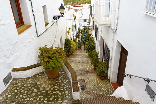 _DSC0691 - Frigiliana (Málaga)
