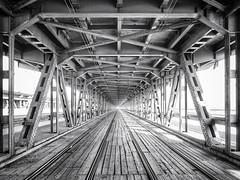 Most Gdański, Warszawa (Marcin Krawczyk) Tags: monochrome railway art warszawa mostgdański marcinkrawczyk bw bridge black white