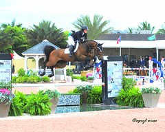 My Granddaughter Kristen Berian (Apryl Wiese) Tags: horse equine showjumping