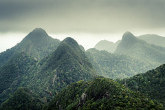 Peaks (Mopple Labalaine) Tags: rainforest langkawi malaysia forest wood peak hill mountain green mystic landscape clouds skybridge