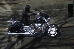 _DSC0140 (morganredwood) Tags: motorcycle motorists bike harleydavidson harley d50 nikon