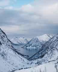 Sifjord, Norway (Sunny Herzinger) Tags: norway fujixpro2 february xf50140f28 winter senja norge troms no