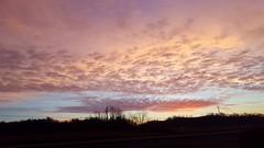 #noedit #nofilter #westvirginia #countryroads #wildandwonderful #morning #sky #clouds #sunrise #sillouette (LittleLions17) Tags: sillouette westvirginia wildandwonderful countryroads nofilter clouds sky sunrise noedit morning