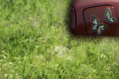 (O) (Sergio Casal) Tags: aprobado surrealism fly cool green colour car