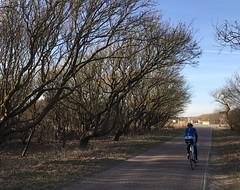 Noordhollands Duinreservaat (klaroen) Tags: noordhollandsduinreservaat
