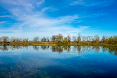 Wetlands after the floods (randyherring) Tags: ca california wetlands elkgrove nature centralcaliforniavalley afternoon cosumnesriverpreserve outdoor water recreational sky clouds galt unitedstates us