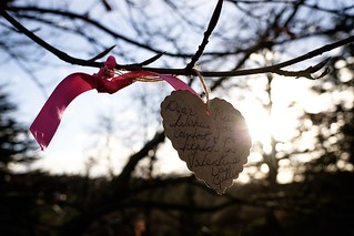 The Love Tree Messages at Polesden Lacey House & Gardens in Great Bookham, Surrey