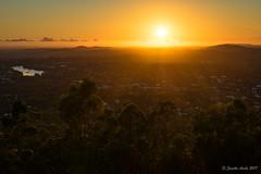 Sunrise rays (NettyA) Tags: 2017 australia brisbane mtcoottha mtcootthalookout qld queensland sonya7r fine seqld sun sunrays sunburst sunrise orange golden brisbaneriver