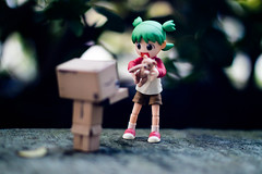 365.15--Share (Leijachan) Tags: toys beginner shoddy 50mm danboard danbo