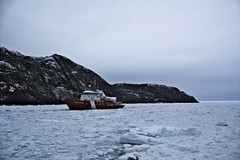 The Leonard J Cowley following the Henry Larsen icebreaker through the sea ice into St. Johns harbour (alpeace89) Tags: sea ice winter april newfoundland canada cold weather boats harbour signalhill signal hill