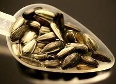 "Macro Mondays ""Seeds"" (Max pics3) Tags: makro macro macromondays closeshot closeup seeds seed samen saatgut saat canon canoneos6d eos6d eos digital tamron"