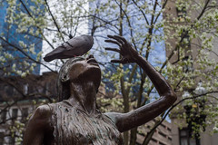 The Agony of Pidgeons (leemik) Tags: sony a7r meyer gorlitz domiron 502 50mm f2 boston marathonmonday patriotsday 2017 bostoncommon publicgardens