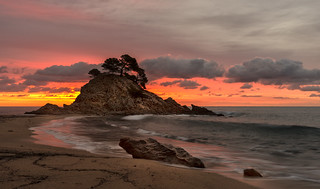 Colores del amanecer -  Sunrise colors (Cap Roig)