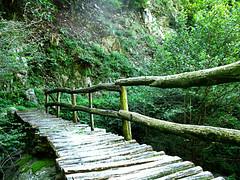 Passerella (dina.elle) Tags: montagna valgrande piemonte italia italy passerella aria pulita camminata passeggiare silenzio legno paesaggio veduta greeen