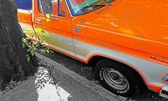 MÁXIMO PODER EN TODO TERRENO. (FOTOS PARA PASAR EL RATO) Tags: parque cdmx calles autos