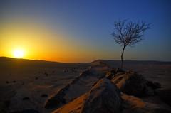 lever de soleil sur le camp 2 (gabs_z) Tags: maroc tazzarine morroco sunset hdr