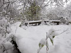 IMG_2837 (sjj62) Tags: s90 snow snowscape lith lakeinthehillsil winter winterscape