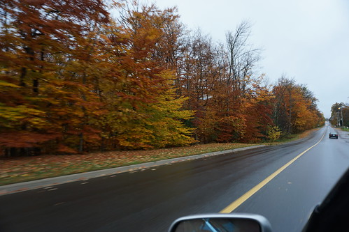 Beautiful Fall Colours en route to #edCampPTBO