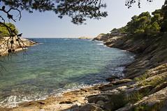 Cala dAiguafreda (Cardo Photos) Tags: sea espaa costa beach bay coast mar spain cove playa catalonia catalunya catalua cala badia begur platja baha espanya aiguafreda costabrava baixempord caladaiguafreda capdebegur