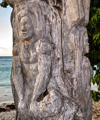 Tree sculpture (Vale Boy) Tags: wood sculpture woman man tree beach canon dead carving antigua caribbean g16 valeboy cliverees