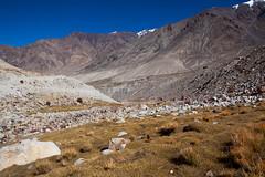 (zyryntyrah) Tags: india mountain leh range ladakh zyryntyrah sirintra