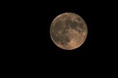 Luna de Octubre (ndrg) Tags: blackandwhite bw españa moon mountain art blancoynegro valencia sepia night photography noche blackwhite twilight spain nikon photographer arte fine luna bn 300mm nocturna nikkor crepusculo montaña valence ndrg 55300mm d5100 ndrg2