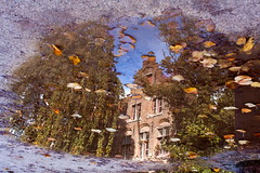 Reflet de Bruges - Brugge gereflecteerd (www.vanbastelaer.be) Tags: street old city sky sun house reflection tree fall tourism window water architecture automne puddle canal photo eau tour belgium belgique belgie upsidedown pierre centre traditional brugge streetphotography center tourist boom relief souvenir reflet ciel reality romantic bruges guide kanaal lovely tradition huis passage maison rue arbre fentre btiment oud faade stad matre raam feuille flanders ancien vitre flaque straat arche realiteit boue pav vlaanderen saule pleureur taille romantique pignon rflexion traditie atmosphre ralit moellon