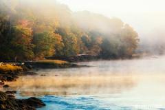 Damariscotta River Sunrise_sm (ROPhoto77) Tags: morning autumn fall misty fog sunrise golden maine foliage damariscottariver canon70d