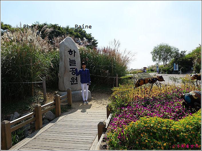 首爾 天空公園 (13).JPG