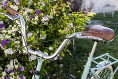 (rio siempre*) Tags: bike bicicleta belleza hermosura jazmin aurorita