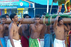 Procession bearers, Nallur Festival Jaffna (Sekitar) Tags: shirtless man men festival work temple sri lanka srilanka procession northern porter jaffna bearer province kovil nallur pigrim northernprovince
