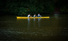 Along the Main (Mule67) Tags: river germany boat frankfurt main rowing 2014 5photosaday