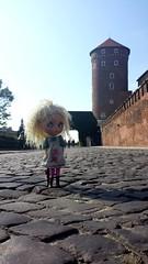 3.365 Wawel Castle
