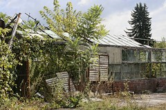 Abandoned Mystery Spot For Halloween! (~ Liberty Images) Tags: ohio abandoned overgrown decay greenhouse forgotten dilapidated overtaken eastliverpool libertyimages riverviewflorist