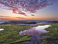 Reflections (macphysio) Tags: pink seascape reflection water clouds sunrise sydney bungan