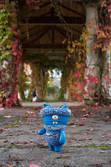 Uglyworld #2474 - Spookiers Walkabouts - (Project On The Go - Image 304-365) (www.bazpics.com) Tags: park new travel blue autumn winter red green fall halloween wool leaves yellow oregon project toy blog kid october day action handmade walk crochet central steps vinyl knit daily boo spooky website covered walkabout figure area jumper local 365 adventures scared custom uglydoll total exploration scare leafs hillsboro 31st wander wedgie uglydolls 2014 wedgehead uglyworld prettyugly barryoneilphotography adventuresinuglyworld uglyadventures