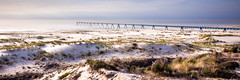 Wharf panorama dune 3:1 (Nicolas Reggiani) Tags: wharf hdr bassindarcachon latestedebuch lasalie